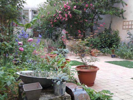 C t jardin votre paysagiste conseil pour un am nagement for Conseil paysagiste jardin