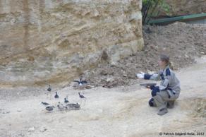 """le Bioparc, par """"le petit bout de la lorgnette"""" (3)"""