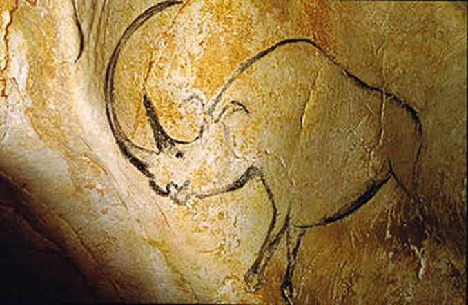 Une merveille dévoilée : la Grotte Chauvet (1)