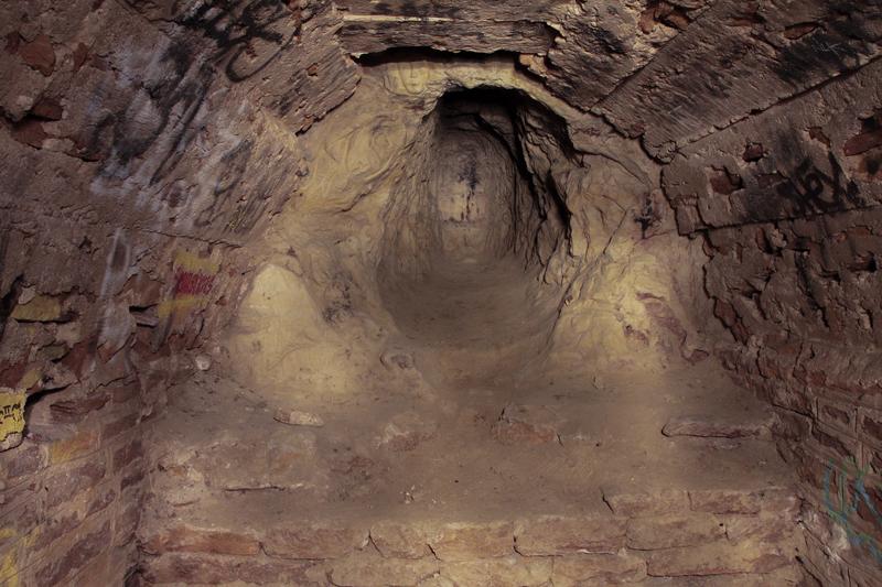 Poisson à la «Lyonnaise» en sous-sol