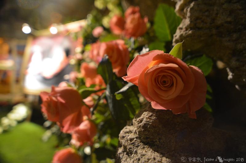 56 ème édition des Journées de la Rose