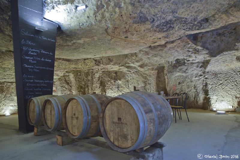 Vino Valley, Saumur entre Loire et coteaux