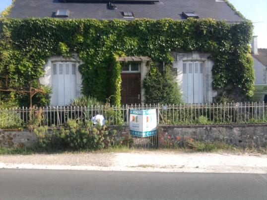 Restauration ou réhabilitation d'un jardin pour optimiser la vente d'une maison : Garden staging