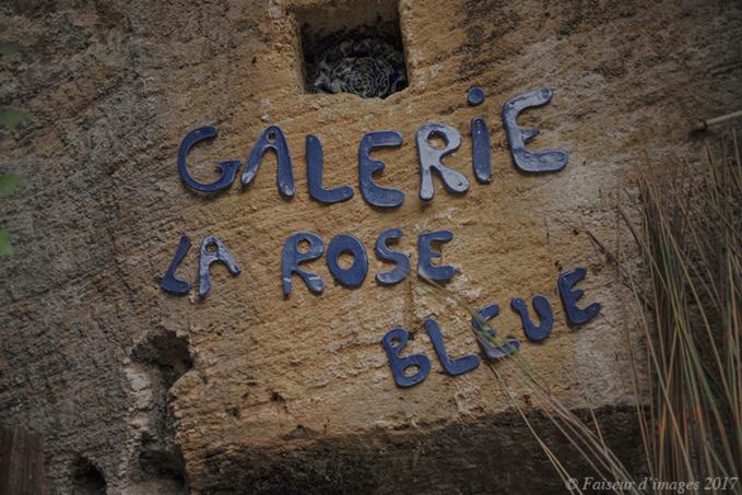 Les pétales de la Rose Bleue