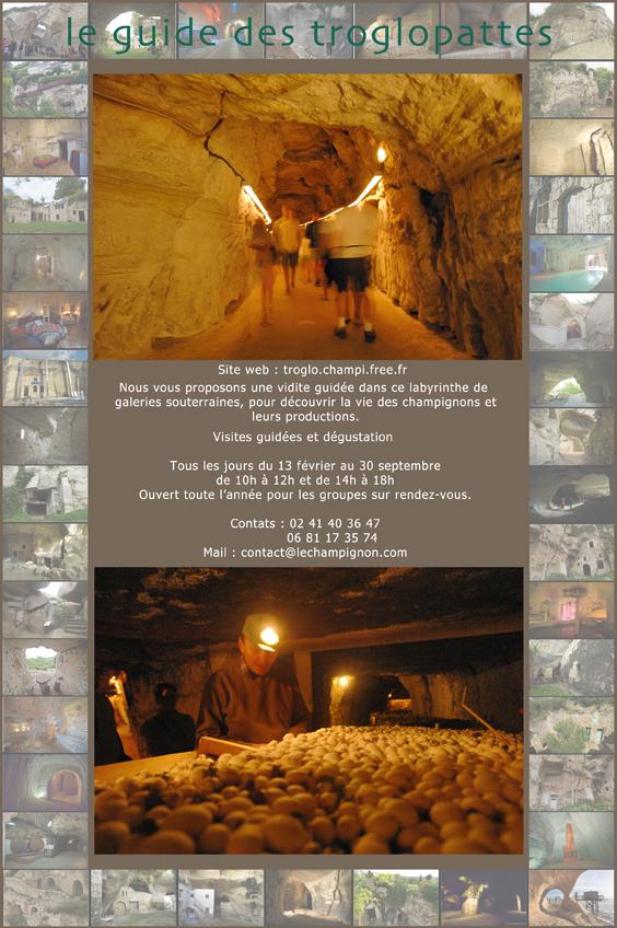 Cave vivante du champignon