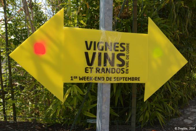 Vignes, vins et randos, 2014