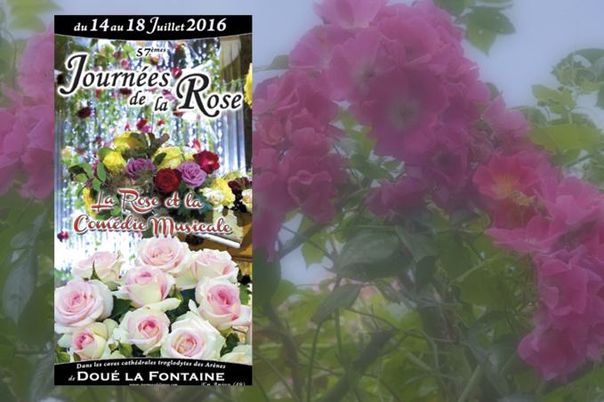 Au nom des roses douessines