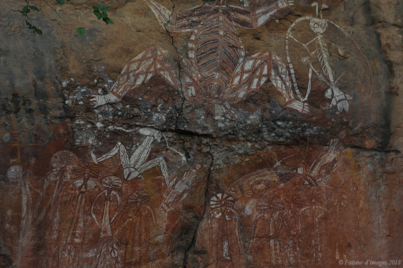 Troglodyte Dundee, les Tags de Kakadu
