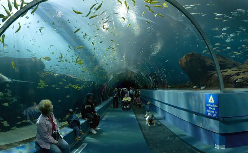 La nouvelle entrée de l'aquarium
