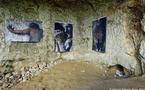 Le mythe de la caverne, par Sandra Daveau