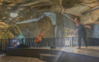 Caves, transes, danse chez Ackerman